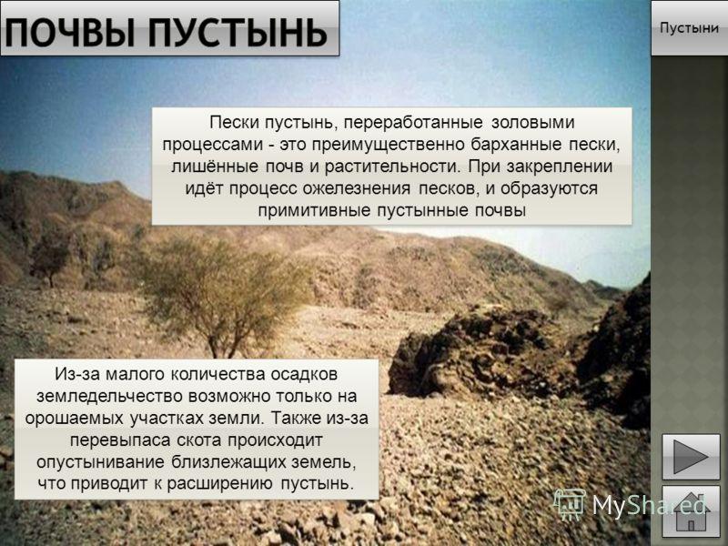 Пустыни Пески пустынь, переработанные золовыми процессами - это преимущественно барханные пески, лишённые почв и растительности. При закреплении идёт процесс ожелезнения песков, и образуются примитивные пустынные почвы Из-за малого количества осадков