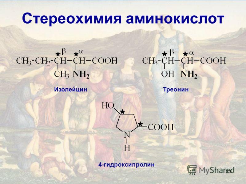 23 Стереохимия аминокислот ИзолейцинТреонин 4-гидроксипролин