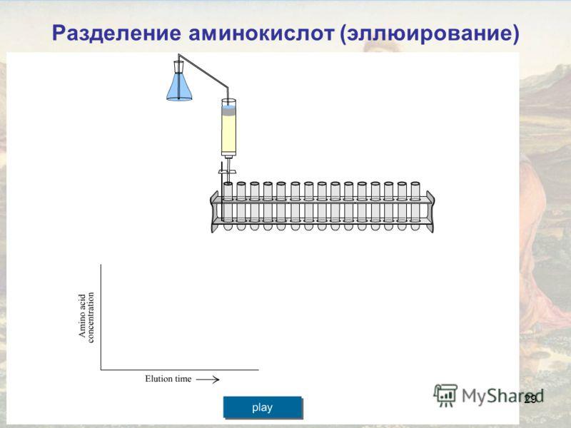 29 Разделение аминокислот (эллюирование)
