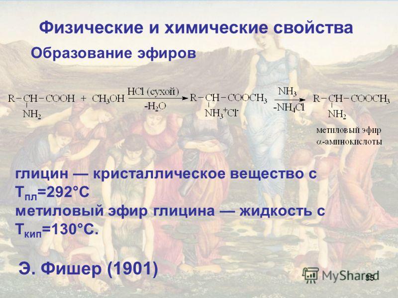 35 Образование эфиров глицин кристаллическое вещество с Т пл =292°С метиловый эфир глицина жидкость с Т кип =130°С. Э. Фишер (1901) Физические и химические свойства
