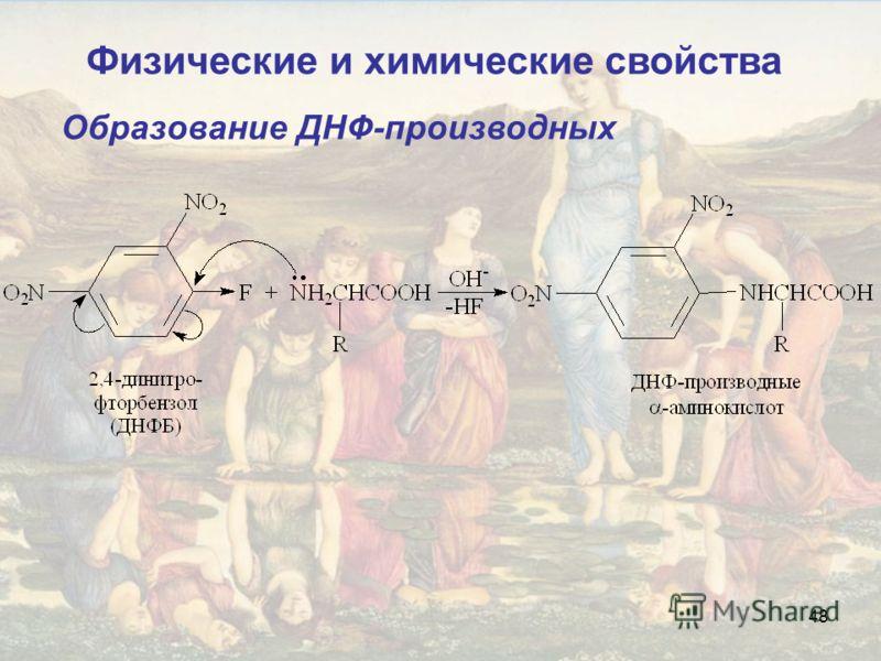 48 Образование ДНФ-производных Физические и химические свойства