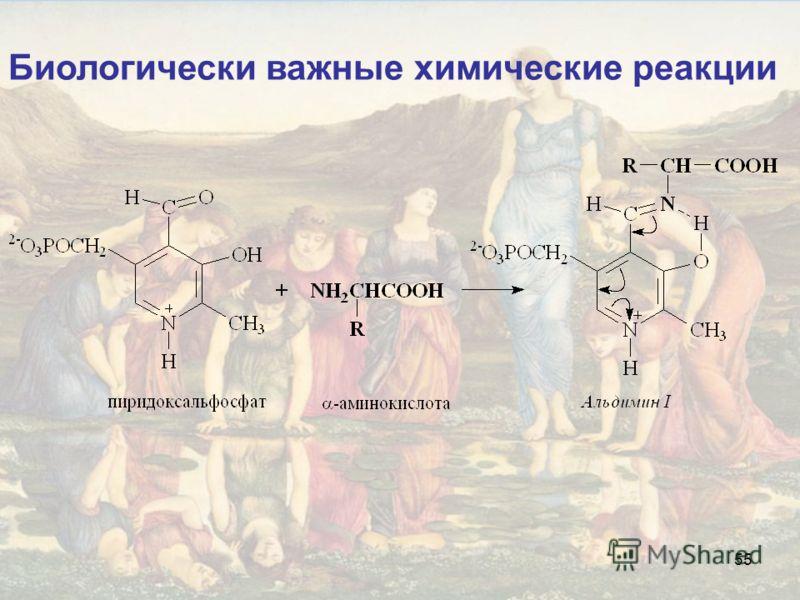 55 Биологически важные химические реакции