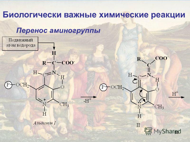 58 Биологически важные химические реакции Перенос аминогруппы