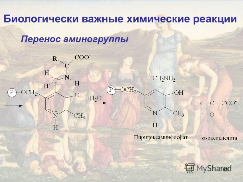 59 Биологически важные химические реакции Перенос аминогруппы