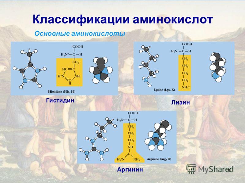 9 Классификации аминокислот Основные аминокислоты Лизин Аргинин Гистидин
