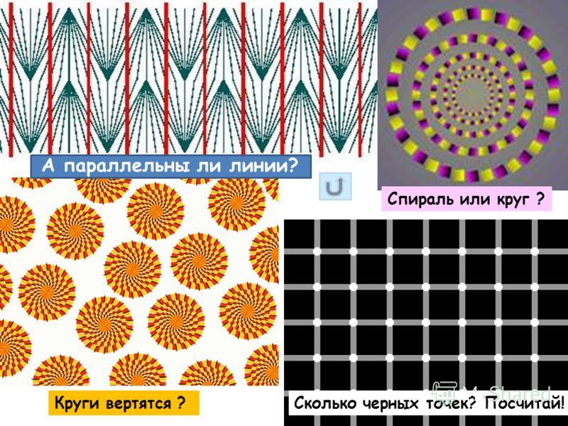 А параллельны ли линии? Сколько черных точек? Посчитай!Круги вертятся ? Спираль или круг ?
