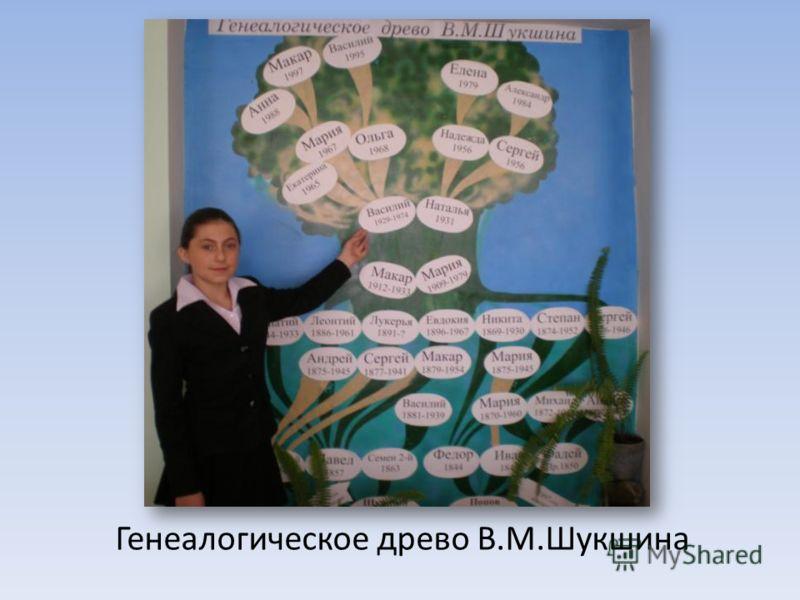 Генеалогическое древо В.М.Шукшина
