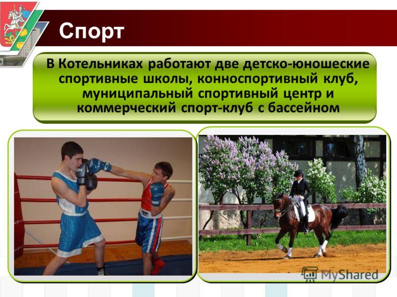В Котельниках работают две детско-юношеские спортивные школы, конноспортивный клуб, муниципальный спортивный центр и коммерческий спорт-клуб с бассейном Спорт