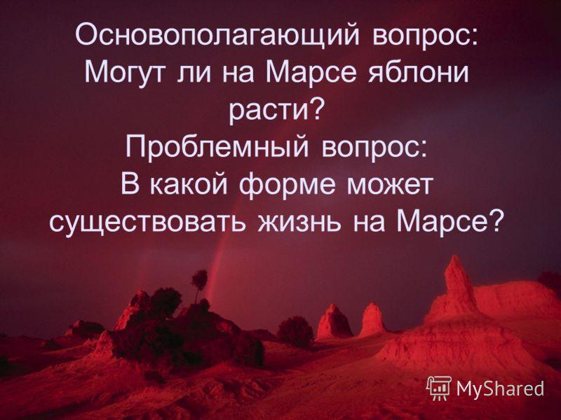 """Россельхознадзор просит разъяснить происхождение """"белорусских"""" цитрусовых и папайи - Цензор.НЕТ 2913"""