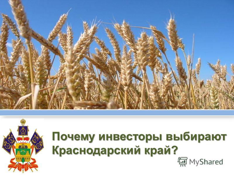 Почему инвесторы выбирают Краснодарский край?