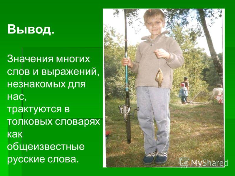 Вывод. Значения многих слов и выражений, незнакомых для нас, трактуются в толковых словарях как общеизвестные русские слова.