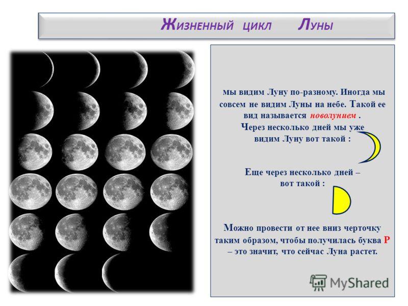 м ы видим Луну по-разному. Иногда мы совсем не видим Луны на небе. Т акой ее вид называется новолунием. Ч ерез несколько дней мы уже видим Луну вот такой : Е ще через несколько дней – вот такой : М ожно провести от нее вниз черточку таким образом, чт