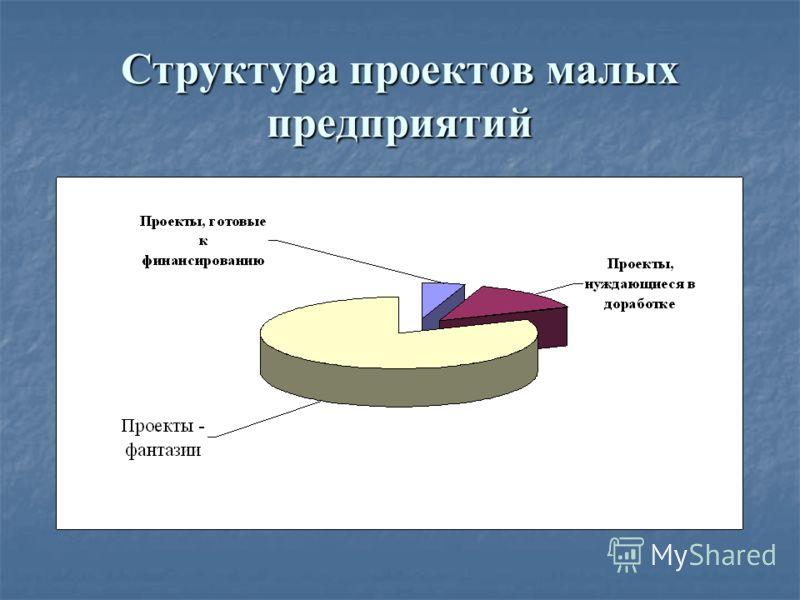 Структура проектов малых предприятий
