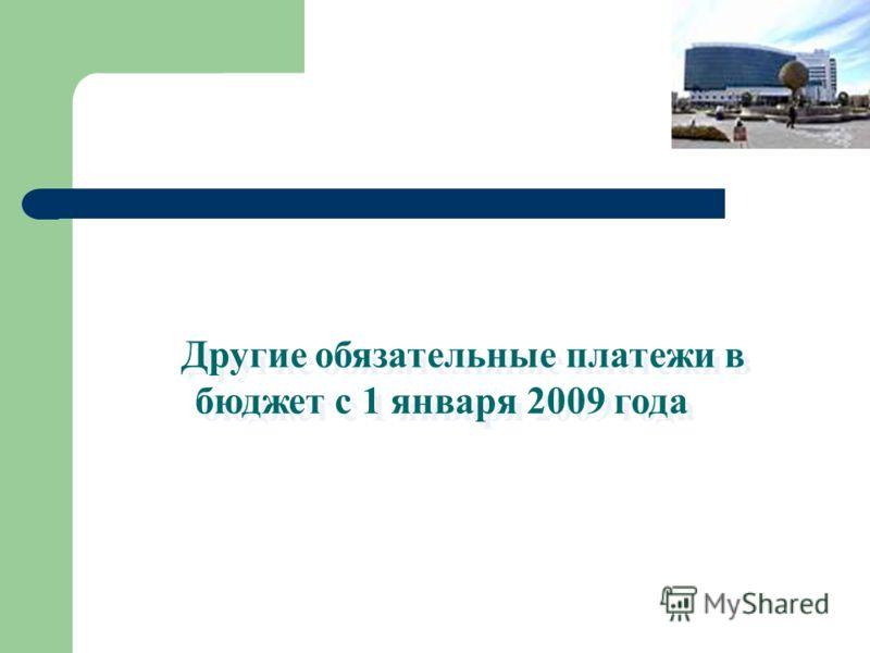 Другие обязательные платежи в бюджет с 1 января 2009 года