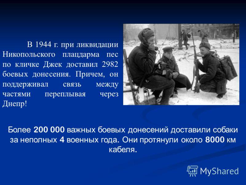 Более 200 000 важных боевых донесений доставили собаки за неполных 4 военных года. Они протянули около 8000 км кабеля. В 1944 г. при ликвидации Никопольского плацдарма пес по кличке Джек доставил 2982 боевых донесения. Причем, он поддерживал связь ме