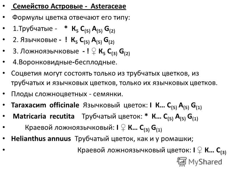 Формула цветка астровых