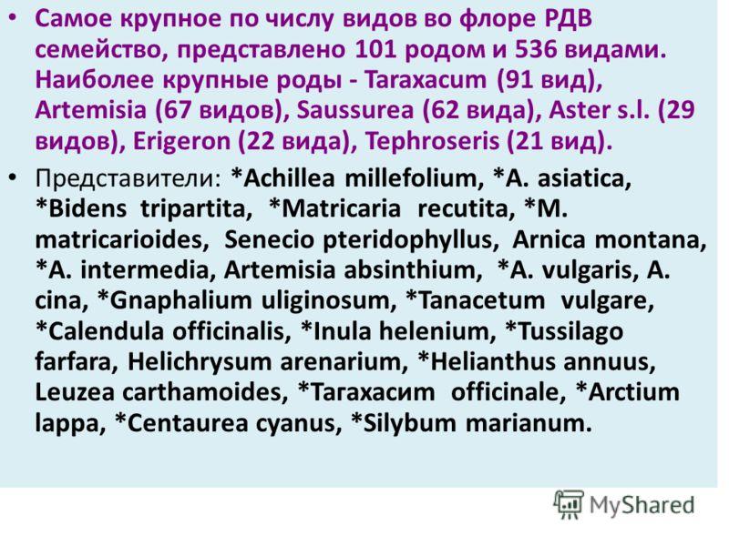 Самое крупное по числу видов во флоре РДВ семейство, представлено 101 родом и 536 видами. Наиболее крупные роды - Taraxacum (91 вид), Artemisia (67 видов), Saussurea (62 вида), Aster s.l. (29 видов), Erigeron (22 вида), Tephroseris (21 вид). Представ