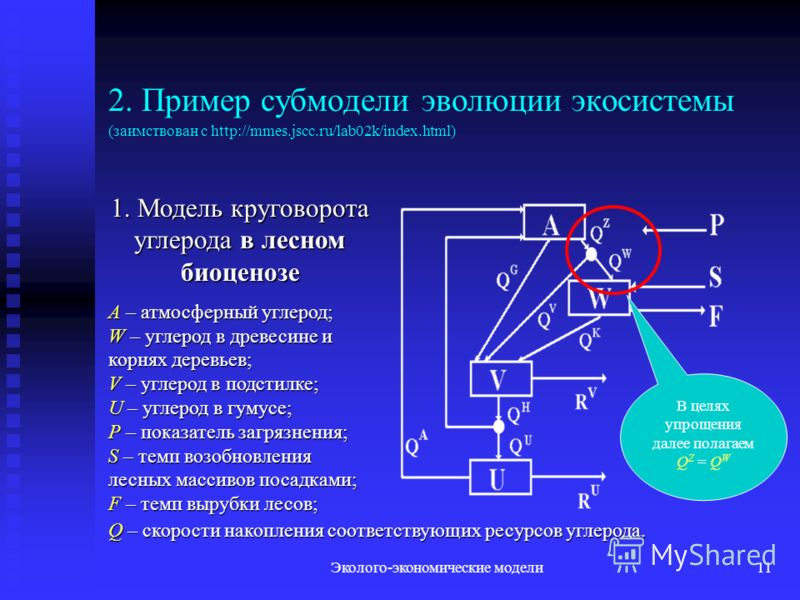 Эколого-экономические модели11 2. Пример субмодели эволюции экосистемы (заимствован с http://mmes.jscc.ru/lab02k/index.html) 1. Модель круговорота углерода в лесном биоценозе A – атмосферный углерод; W – углерод в древесине и корнях деревьев; V – угл