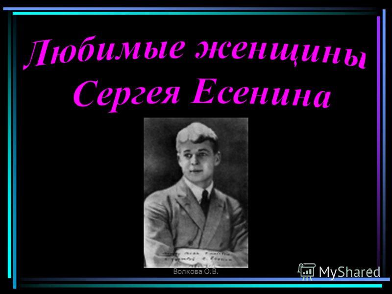 Волкова О.В.2