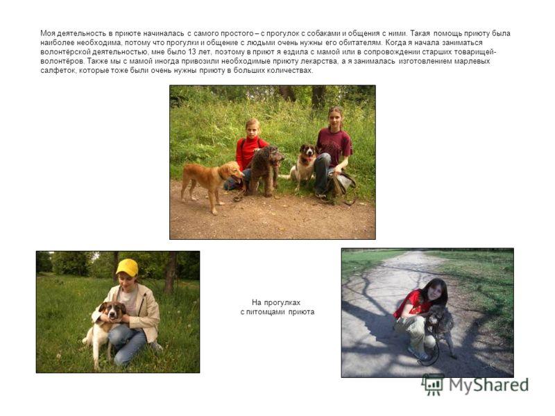 Моя деятельность в приюте начиналась с самого простого – с прогулок с собаками и общения с ними. Такая помощь приюту была наиболее необходима, потому что прогулки и общение с людьми очень нужны его обитателям. Когда я начала заниматься волонтёрской д