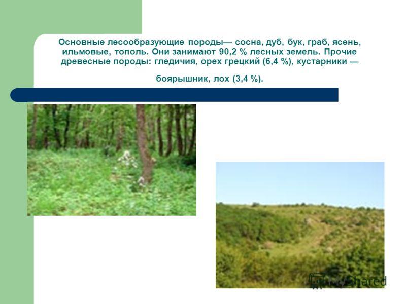 Основные лесообразующие породы сосна, дуб, бук, граб, ясень, ильмовые, тополь. Они занимают 90,2 % лесных земель. Прочие древесные породы: гледичия, орех грецкий (6,4 %), кустарники боярышник, лох (3,4 %).