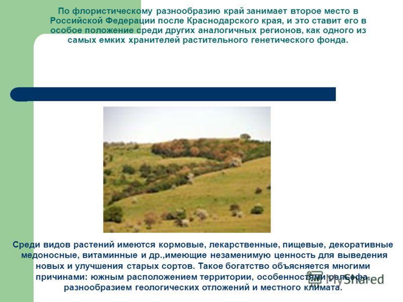 По флористическому разнообразию край занимает второе место в Российской Федерации после Краснодарского края, и это ставит его в особое положение среди других аналогичных регионов, как одного из самых емких хранителей растительного генетического фонда
