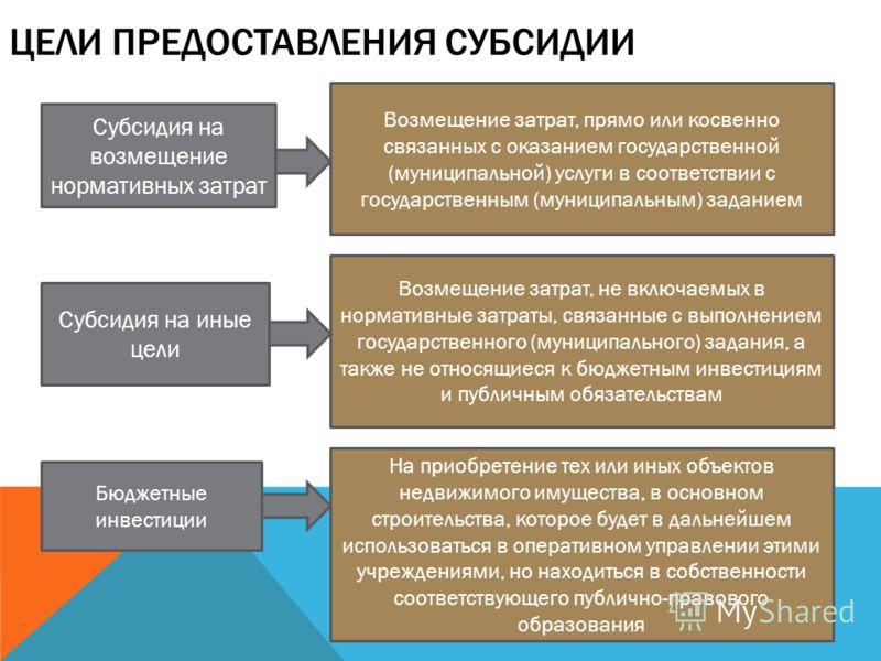 ЦЕЛИ ПРЕДОСТАВЛЕНИЯ СУБСИДИИ Субсидия на возмещение нормативных затрат Субсидия на иные цели Бюджетные инвестиции Возмещение затрат, прямо или косвенно связанных с оказанием государственной (муниципальной) услуги в соответствии с государственным (мун