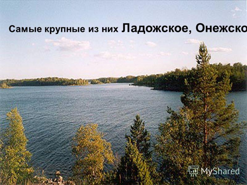 Самые крупные из них Ладожское, Онежское.