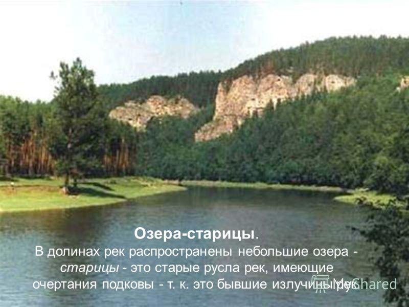 Озера-старицы. В долинах рек распространены небольшие озера - старицы - это старые русла рек, имеющие очертания подковы - т. к. это бывшие излучины рек.