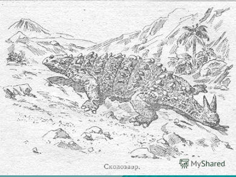 Самым страшным хищным яшером был тиранозавр. Он достигал в длину 14 м. Его череп, длиной более метра, имел большие острые зубы. Передвигался тиранозавр на мощных задних ногах, опираясь на толстый хвост. Его передние ноги были маленькими и слабыми. От