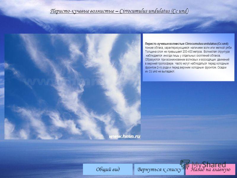 Перисто-кучевые волнистые – Cirrocumulus undulatus (Cc und) Перисто-кучевые волнистые Cirrocumulus undulatus (Cc und) тонкие облака, характеризующиеся наличием волн или мелкой ряби. Толщина слоя не превышает 200-400 метров. Волнистая структура наблюд