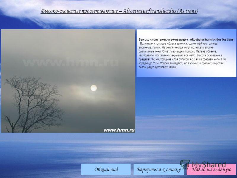 Высоко-слоистые просвечивающие – Altostratus ftranslucidus (As trans) Высоко-слоистые просвечивающие - Altostratus translucidus (As trans) Волнитсая структура облака заметна, солнечный круг солнца вполне различим. На земле иногда могут возникать впол