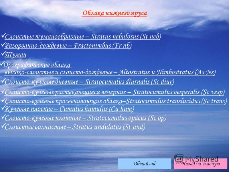 Облака нижнего яруса Слоистые туманообразные – Stratus nebulosus (St neb) Слоистые туманообразные – Stratus nebulosus (St neb) Разорванно-дождевые – Fractonimbus (Fr nb) Разорванно-дождевые – Fractonimbus (Fr nb) Туман Орографические облака высоко-сл
