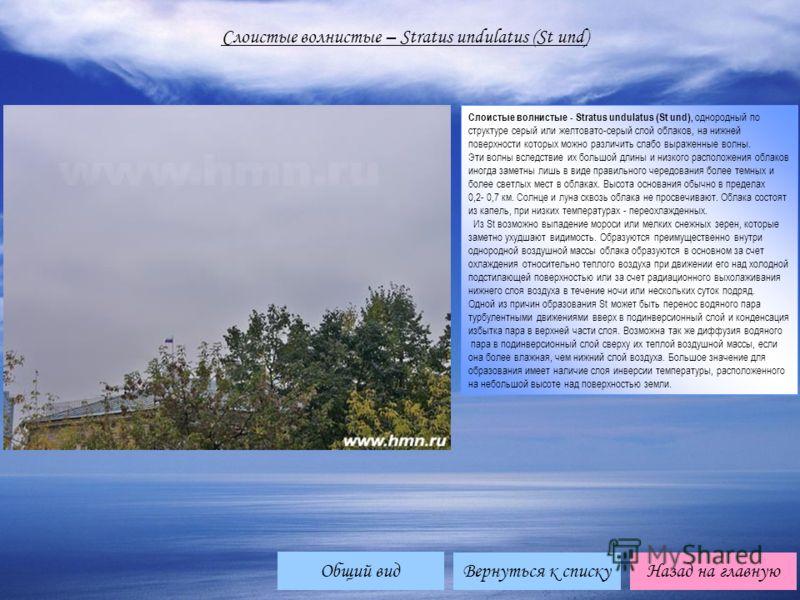 Слоистые волнистые – Stratus undulatus (St und) Слоистые волнистые - Stratus undulatus (St und), однородный по структуре серый или желтовато-серый слой облаков, на нижней поверхности которых можно различить слабо выраженные волны. Эти волны вследстви