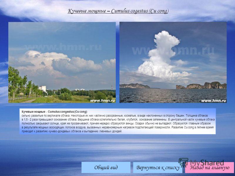 Вернуться к спискуНазад на главную Кучевые мощные – Cumulus cogestus (Cu cong) Кучевые мощные - Cumulus congestus (Cu cong) сильно развитые по вертикале облака. Некоторые их них частично разорванные, косматые, в виде наклоненных в сторону башен. Толщ