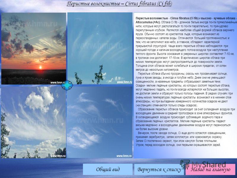 Вернуться к списку Перистые волокнистые – Cirrus fibratus (Ci fib) Назад на главную Перистые волокнистые - Cirrus fibratus (Ci fib) и высоко - кучевые облака - Altocumulus (+Ac). Облака Ci fib - длинное белые иногда почти прямолинейные нити, которые