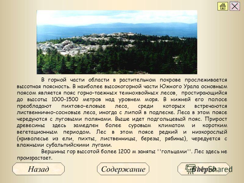 В горной части области в растительном покрове прослеживается высотная поясность. В наиболее высокогорной части Южного Урала основным поясом является пояс горно-таежных темнохвойных лесов, простирающийся до высоты 1000-1500 метров над уровнем моря. В