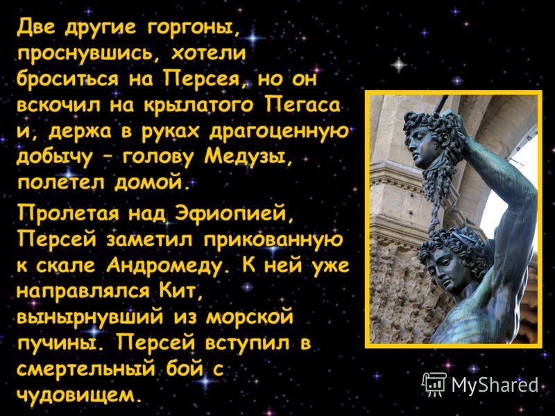 Две другие горгоны, проснувшись, хотели броситься на Персея, но он вскочил на крылатого Пегаса и, держа в руках драгоценную добычу – голову Медузы, полетел домой. Пролетая над Эфиопией, Персей заметил прикованную к скале Андромеду. К ней уже направля