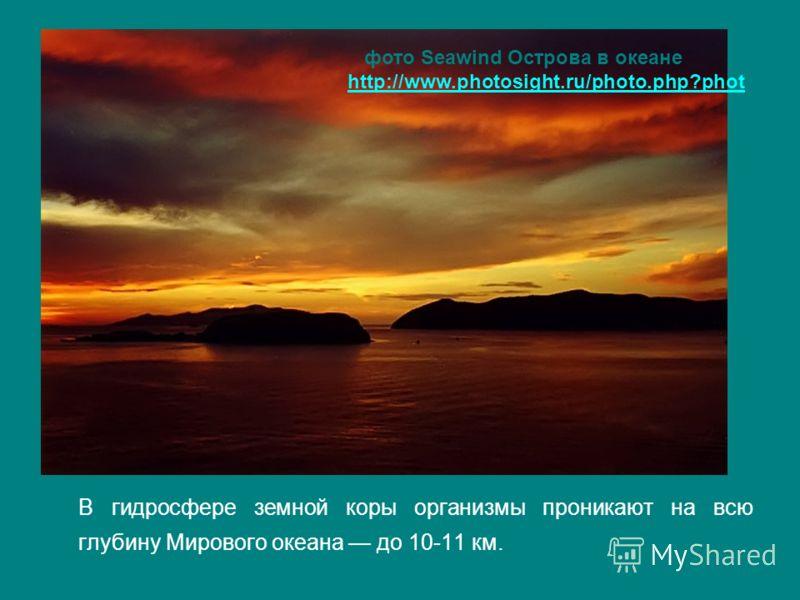 В гидросфере земной коры организмы проникают на всю глубину Мирового океана до 10-11 км. фото Seawind Острова в океане http://www.photosight.ru/photo.php?phot