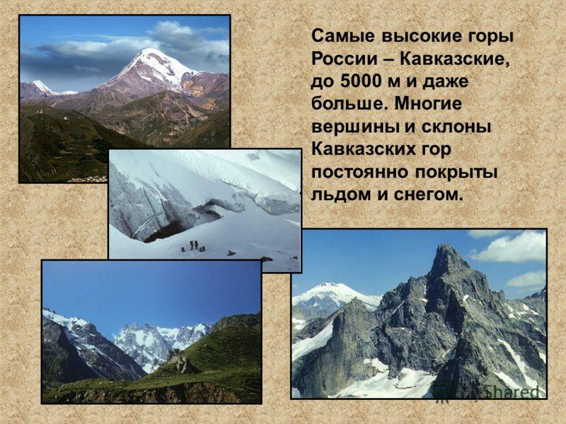 Самые высокие горы России – Кавказские, до 5000 м и даже больше. Многие вершины и склоны Кавказских гор постоянно покрыты льдом и снегом.
