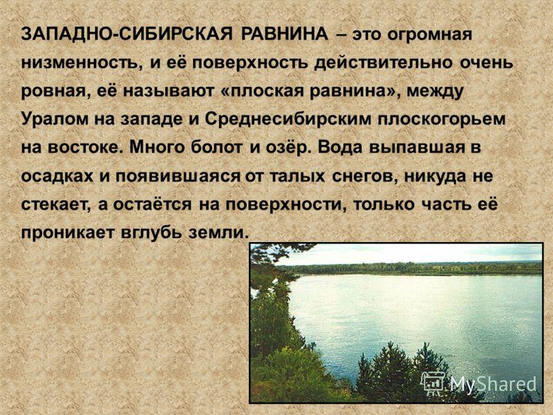 ЗАПАДНО-СИБИРСКАЯ РАВНИНА – это огромная низменность, и её поверхность действительно очень ровная, её называют «плоская равнина», между Уралом на западе и Среднесибирским плоскогорьем на востоке. Много болот и озёр. Вода выпавшая в осадках и появивша
