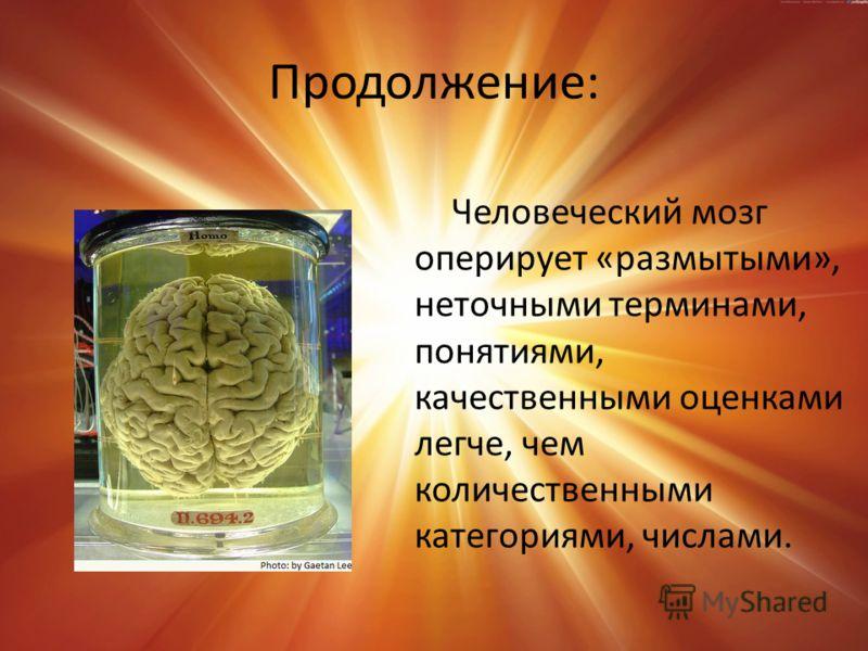 Продолжение: Человеческий мозг оперирует «размытыми», неточными терминами, понятиями, качественными оценками легче, чем количественными категориями, числами.