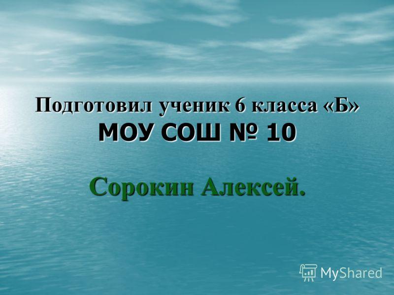 Подготовил ученик 6 класса «Б» МОУ СОШ 10 Сорокин Алексей.