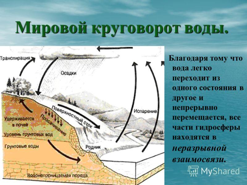Мировой круговорот воды. Благодаря тому что вода легко переходит из одного состояния в другое и непрерывно перемещается, все части гидросферы находятся в неразрывной взаимосвязи.