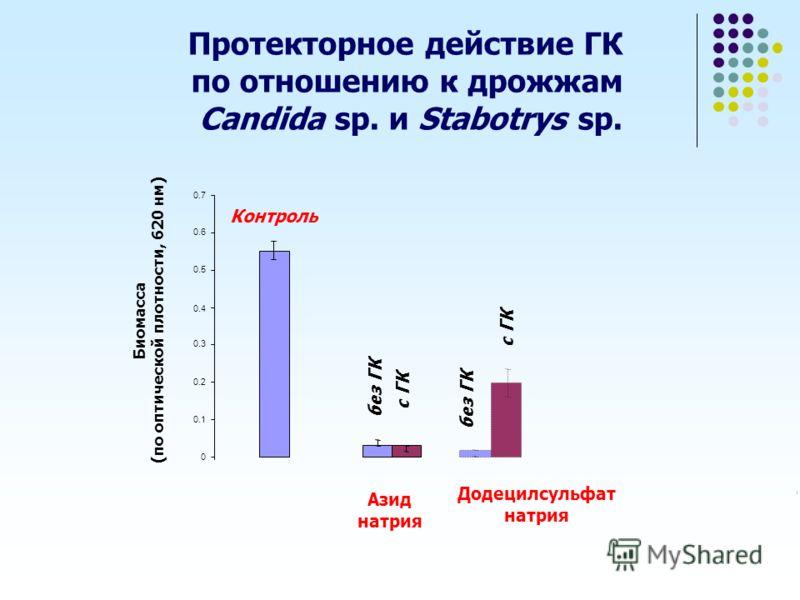 Протекторное действие ГК по отношению к дрожжам Candida sp. и Stabotrys sp. без ГК с ГК Додецилсульфат натрия Контроль 0 0.1 0.2 0.3 0.4 0.5 0.6 0.7 Азид натрия Биомасса (по оптической плотности, 620 нм) с ГК без ГК