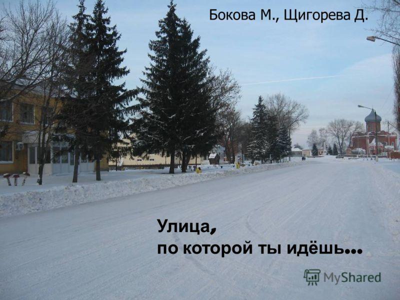 Улица, по которой ты идёшь … Бокова М., Щигорева Д.