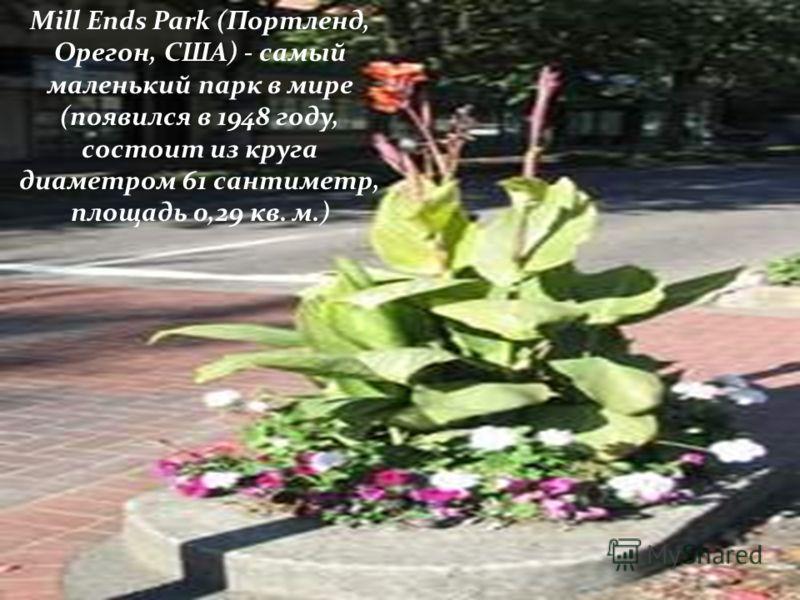 Mill Ends Park (Портленд, Орегон, США) - самый маленький парк в мире (появился в 1948 году, состоит из круга диаметром 61 сантиметр, площадь 0,29 кв. м.)