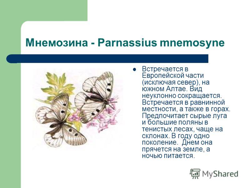 Мнемозина - Parnassius mnemosyne Встречается в Европейской части (исключая север), на южном Алтае. Вид неуклонно сокращается. Встречается в равнинной местности, а также в горах. Предпочитает сырые луга и большие поляны в тенистых лесах, чаще на склон