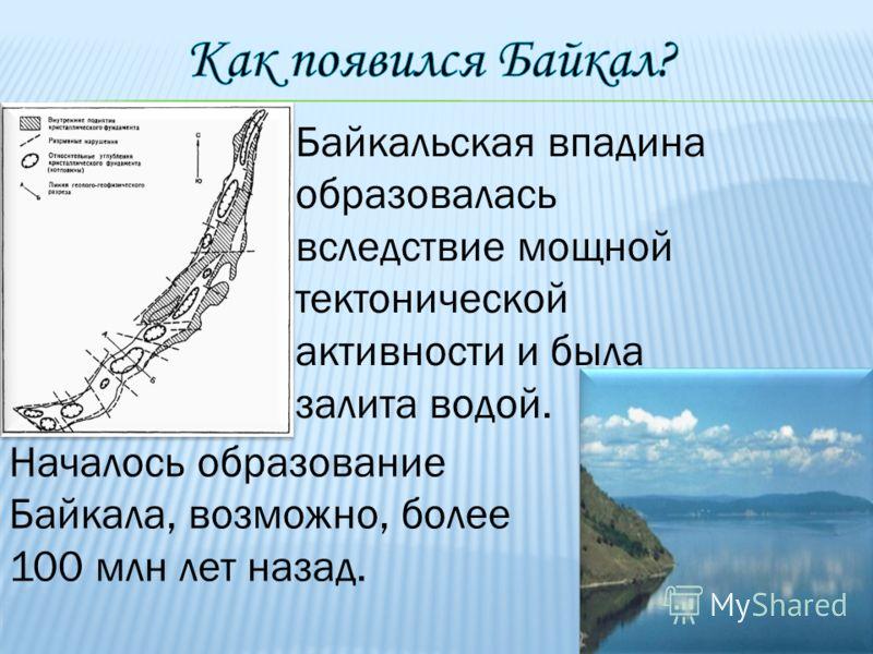 Байкальская впадина образовалась вследствие мощной тектонической активности и была залита водой. Началось образование Байкала, возможно, более 100 млн лет назад.