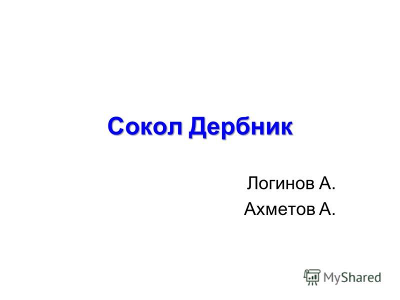 Сокол Дербник Логинов А. Ахметов А.
